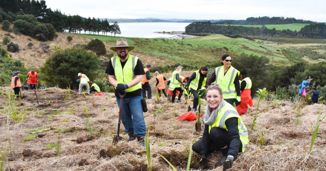 Conservation Volunteers New Zealand